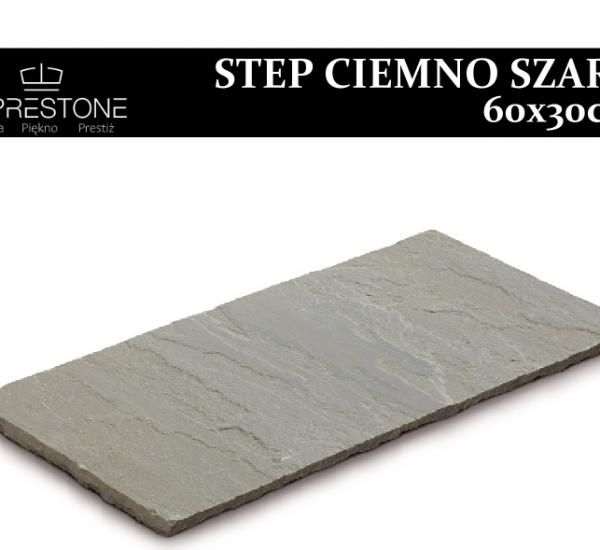 Step CiemnoSzary, Kamień Ścieżkowy